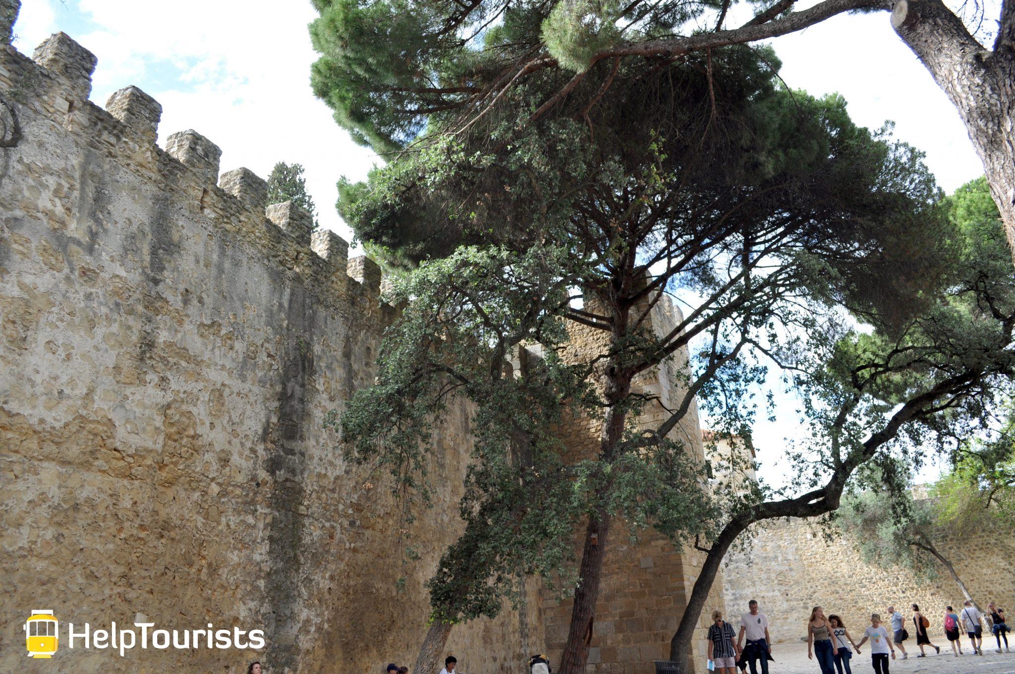 Lissabon Castelo de sao jorge garten