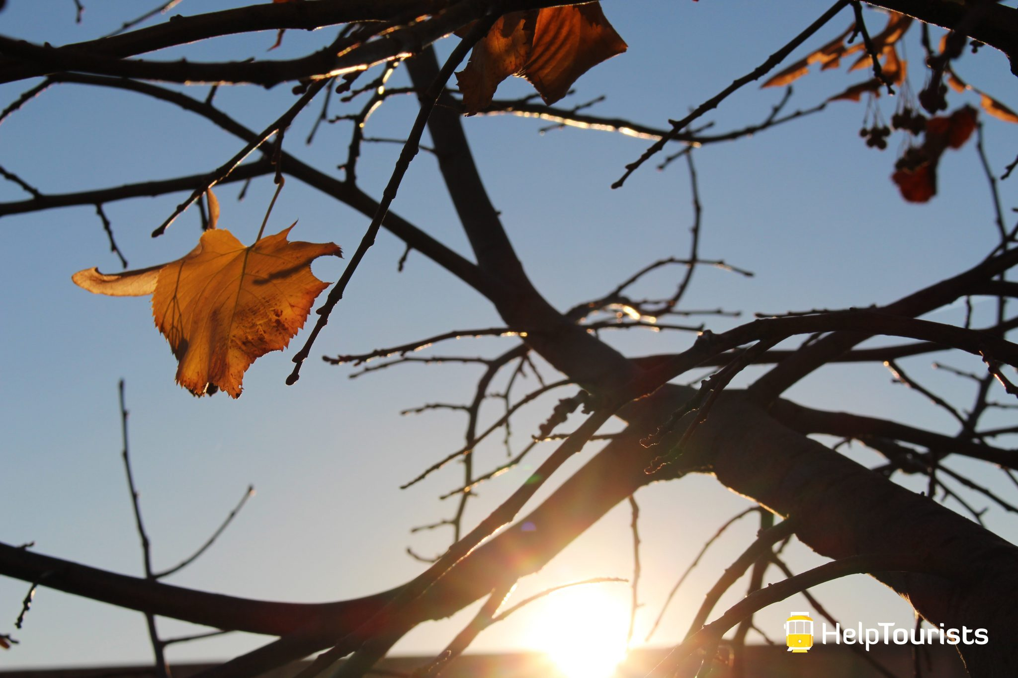 LISSABON_Alfama_Sonnenuntergang_Herbst_l